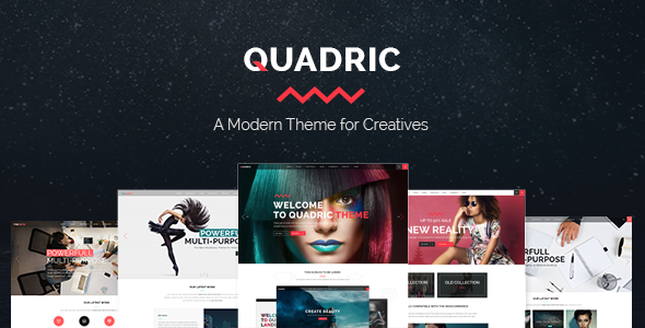 Quadric wordpress cms themes and plugins vente sell
